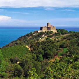 Visite Fort Saint Elme 10h30